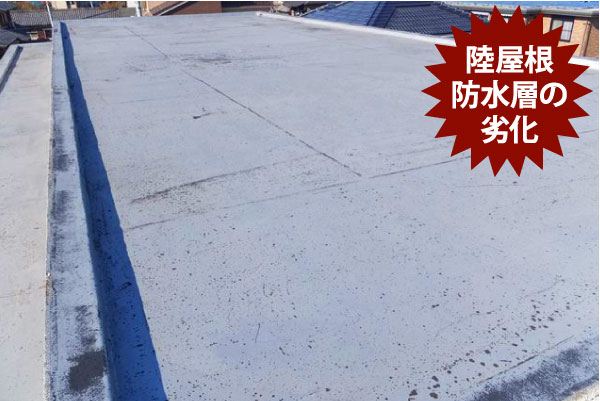 陸屋根防水層の劣化