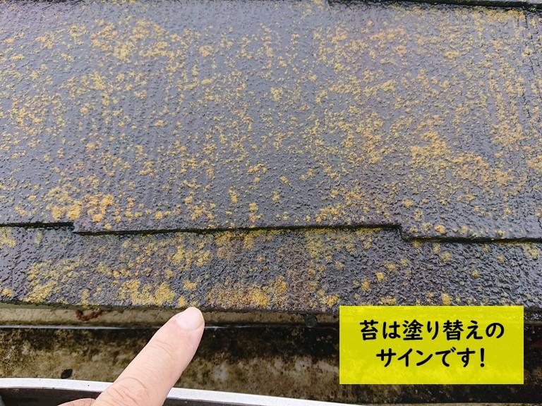 スレートに生えた苔は塗り替えのサインです