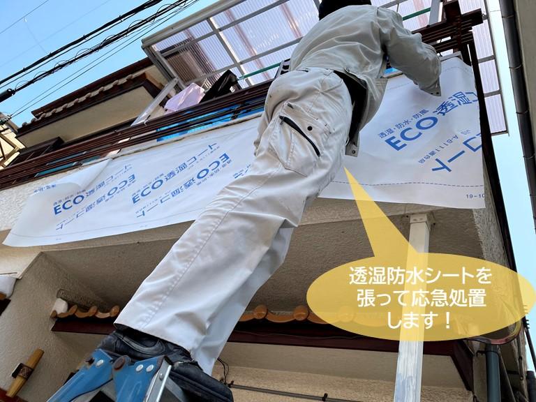 和泉市のベランダの外壁に透湿防水シートを張って応急処置します