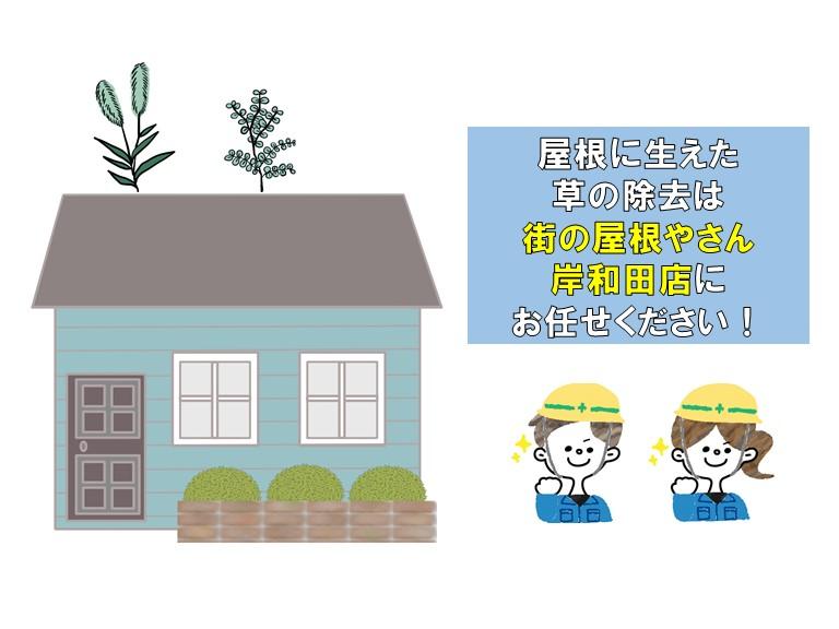 屋根に生えた草の除去は街の屋根やさんに
