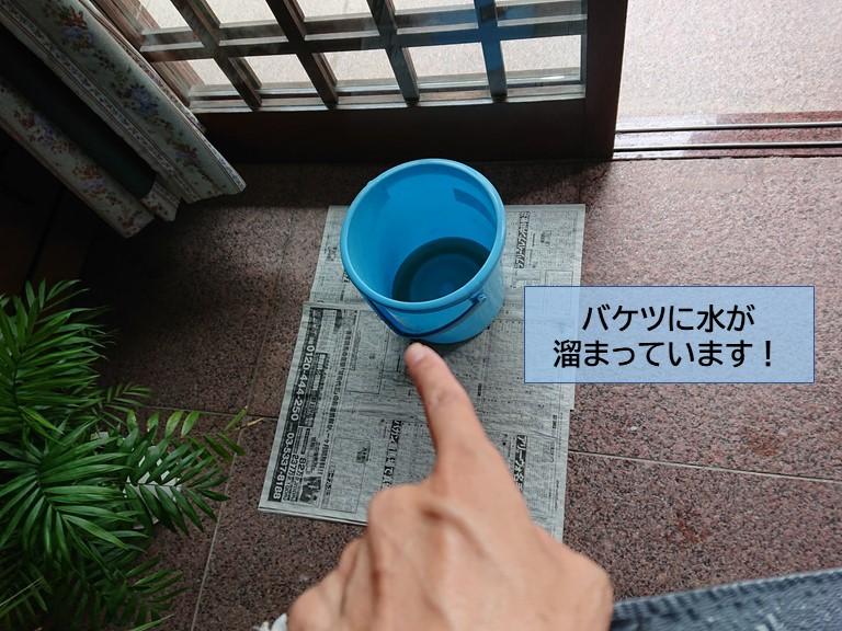 岸和田市で雨漏りが発生してバケツに水が溜まっています