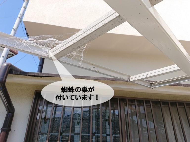 岸和田市のカーポートに蜘蛛の巣が付いています