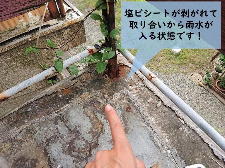 岸和田市のベランダの塩ビシートが剥がれています