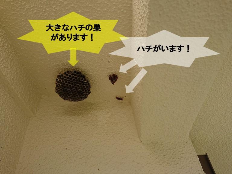 岸和田市の外壁にハチの巣があ