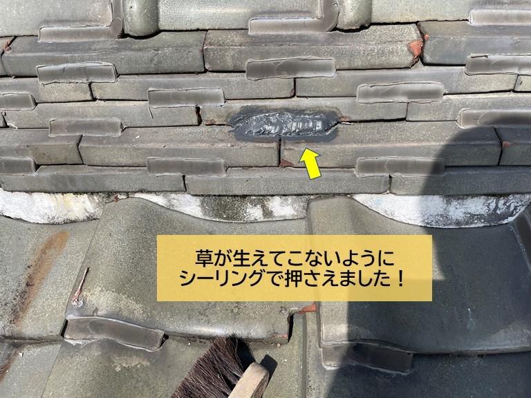 岸和田市の屋根から草が生えてこないようにシーリングで押さえました