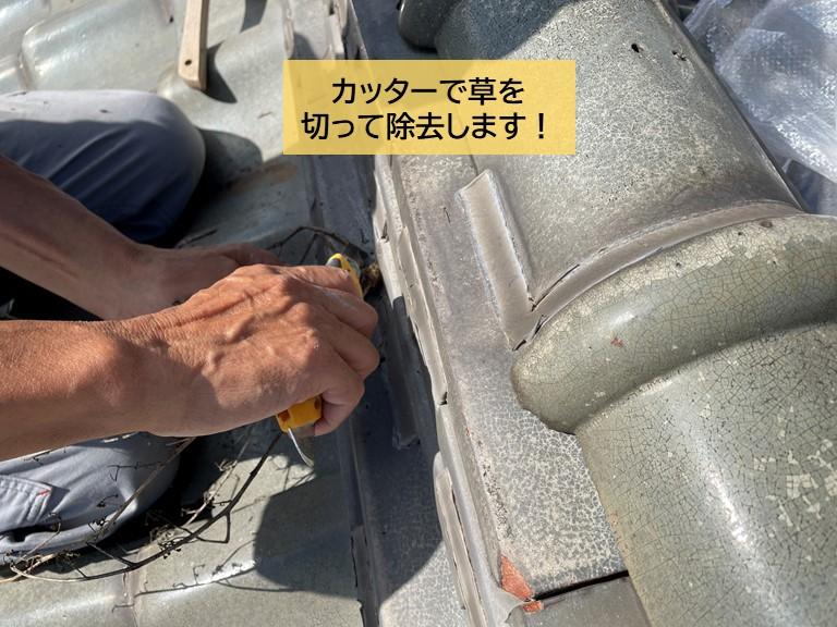 岸和田市の屋根に生えた草をカッターで切って除去します