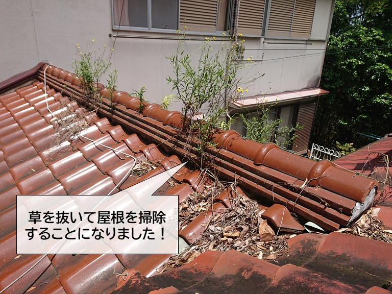岸和田市の屋根に生えた草を抜いて掃除することになりました