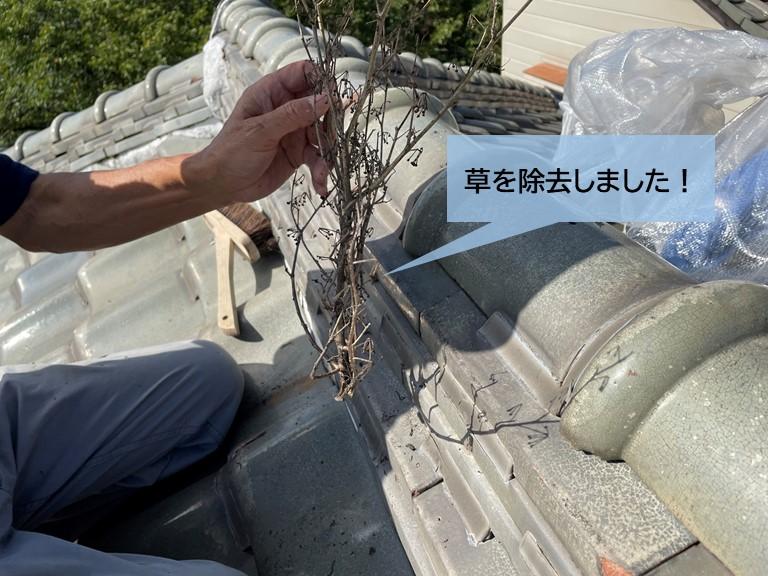 岸和田市の屋根に生えた草を撤去しました