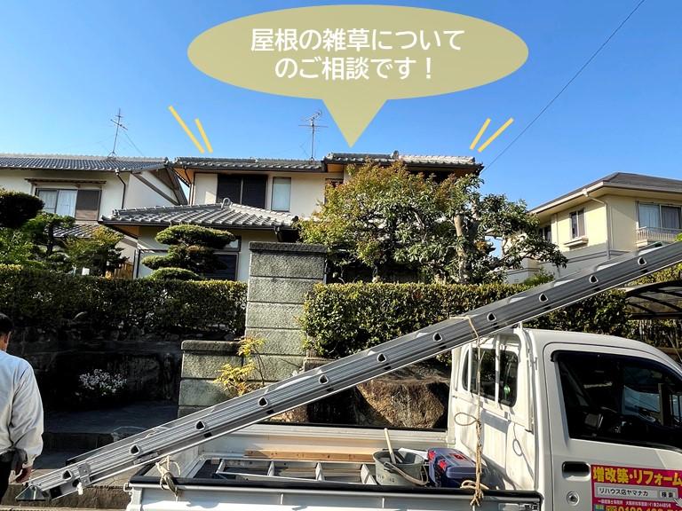 岸和田市の屋根の雑草についてのご相談