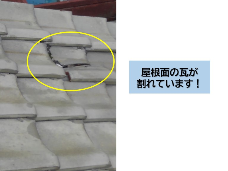岸和田市の屋根面の瓦が割れています