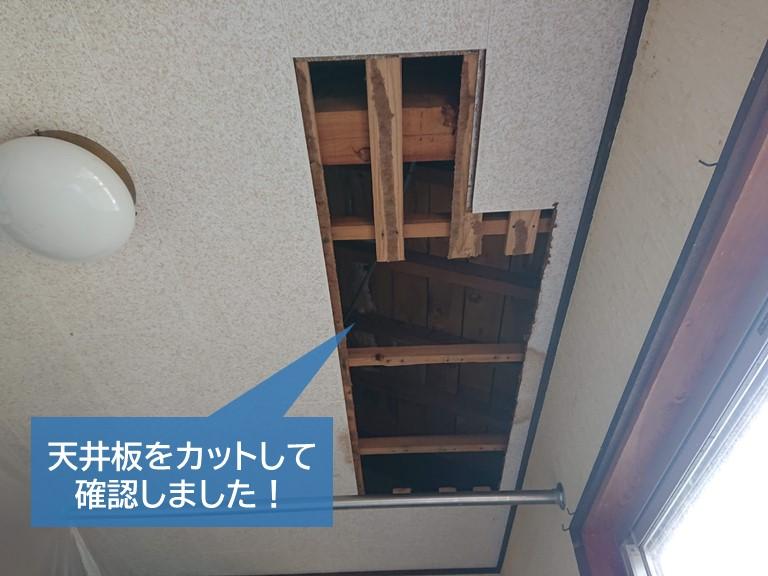 岸和田市の洋室の天井板をカットして確認しました!