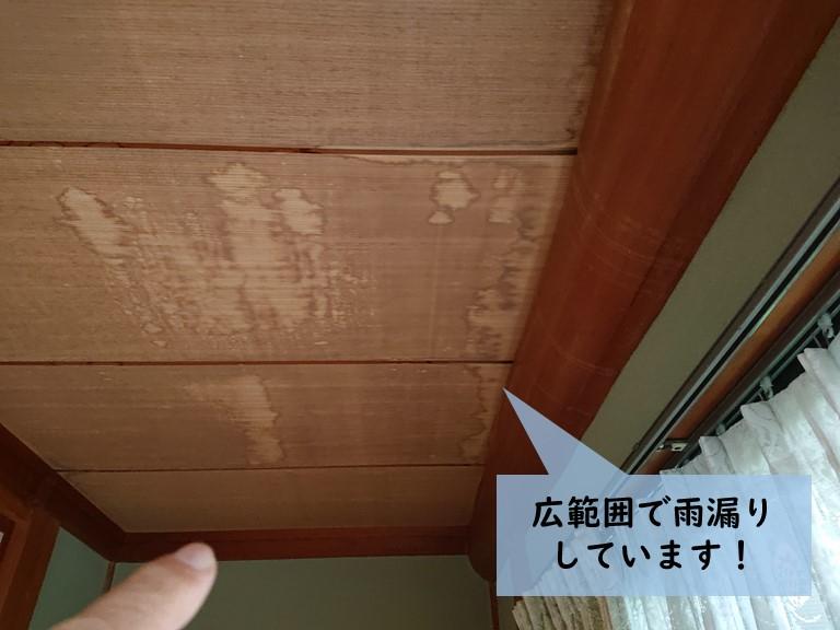 岸和田市の縁側の天井の広範囲で雨漏りしています