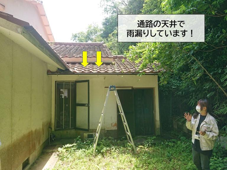 岸和田市の通路の天井で雨漏りしています