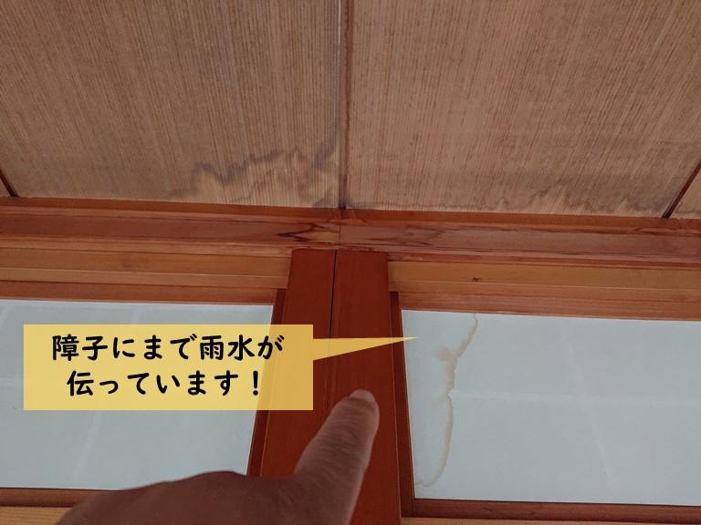 岸和田市の障子にまで雨水が伝っています