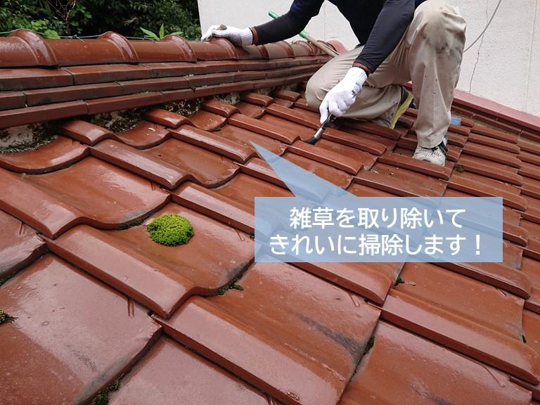 岸和田市の雑草を取り除いてきれいに掃除します