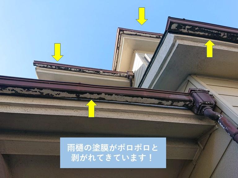 岸和田市の雨樋の塗膜が剥がれてきています