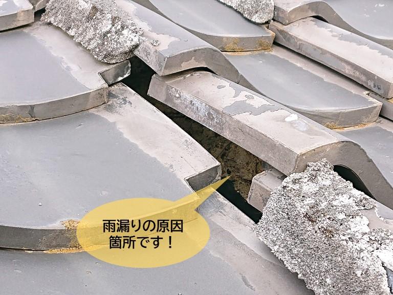 岸和田市の雨漏りの原因箇所