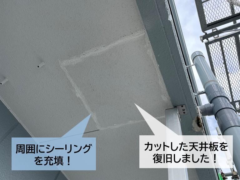 忠岡町のマンションのベランダのカットした天井板を復旧!