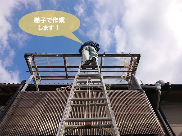 泉佐野市の波板修理を梯子作業で行います