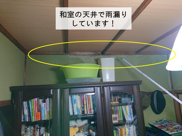 泉大津市の和室の天井で雨漏りしています