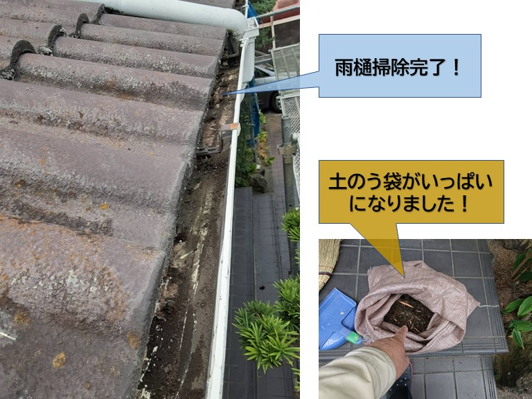泉大津市の雨樋掃除完了