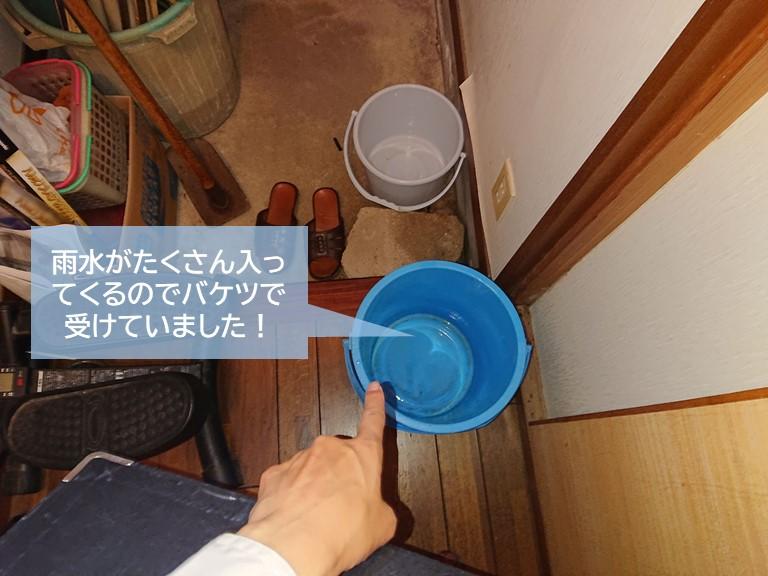 泉大津市の雨漏りをバケツで対応されていました