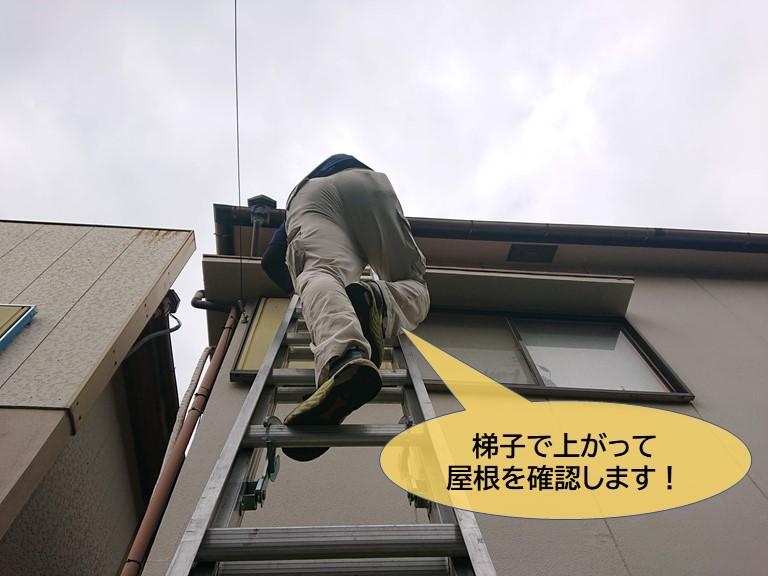 貝塚市の屋根の調査