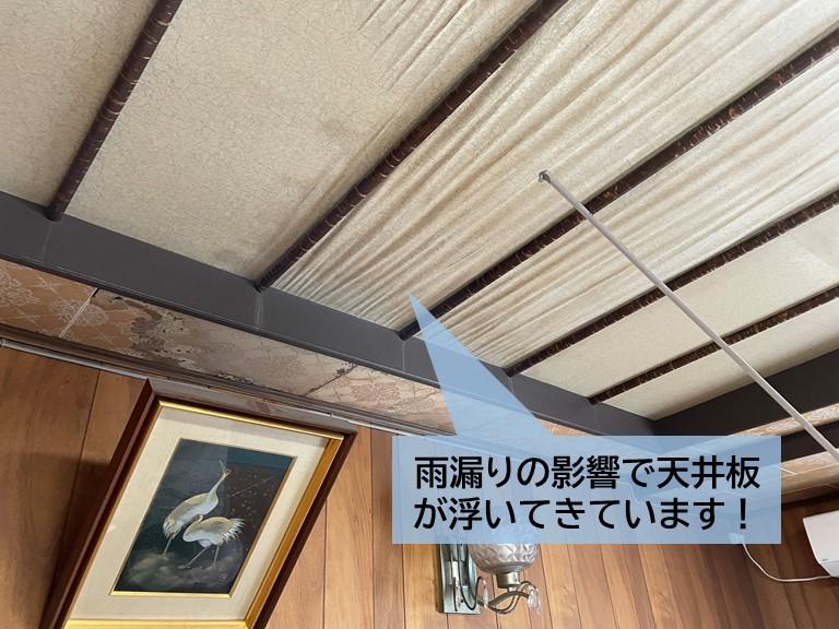 貝塚市の洋室の天井板が雨漏りで傷んでいます