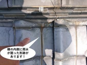 泉佐野市の棟の内側に雨水が廻った形跡があります