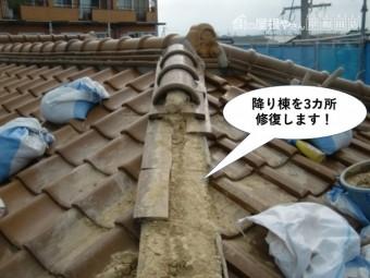 熊取町の降り棟を3カ所修復します