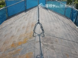岸和田市摩湯町の苔の生えた屋根