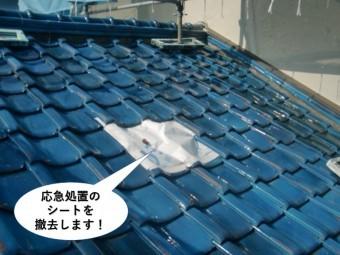 岸和田市で屋根の応急処置のシートを撤去します