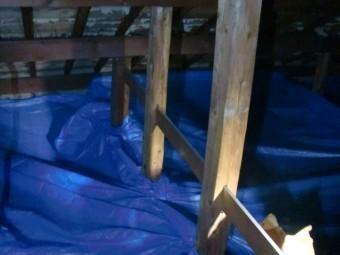 岸和田市土生町の屋根葺き替えに伴う小屋裏養生