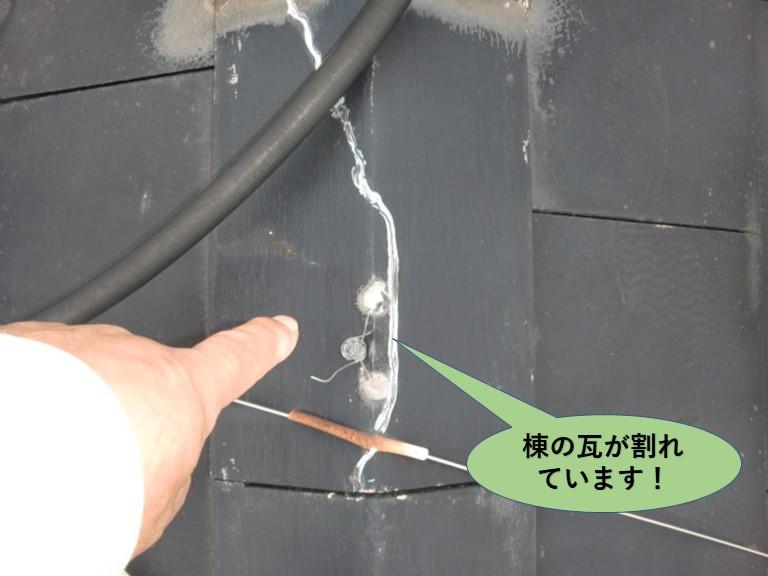 阪南市の棟の瓦が割れています