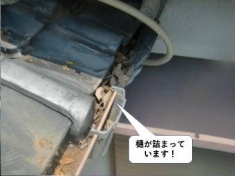 岸和田市の樋が詰まっています