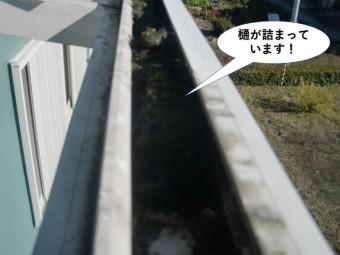 泉南市のテラスの樋が詰まっています