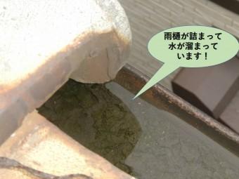 泉大津市の雨樋が詰まって水が溜まっています