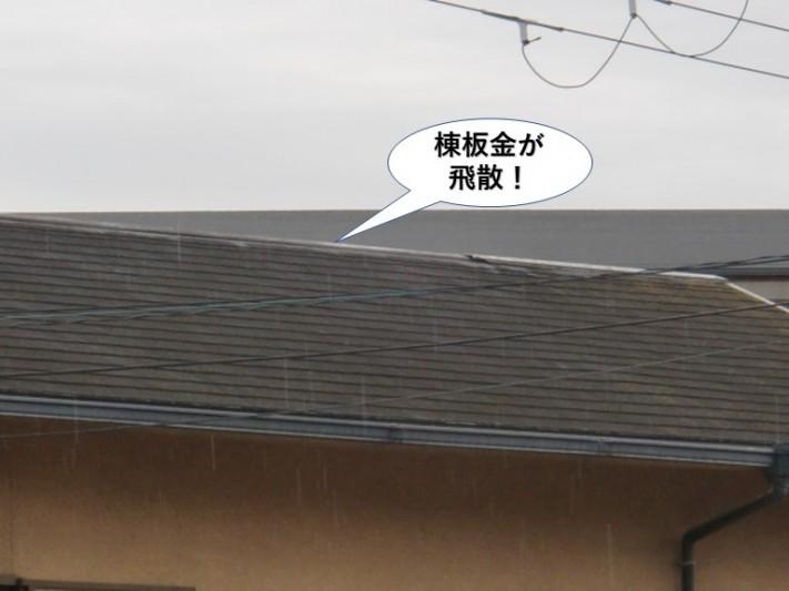 貝塚市の棟板金が飛散