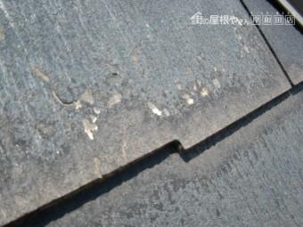 岸和田市加守町の蘇ったスレート板葺きの屋根塗装