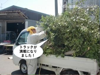 岸和田市で伐採した木でトラックが満載になりました