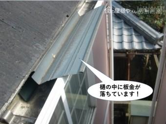 和泉市の雨樋の中に板金が落ちています