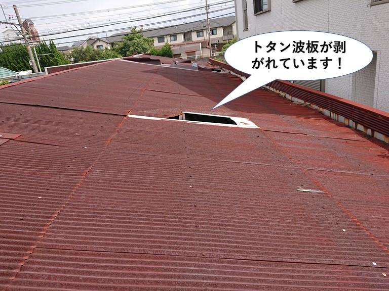 貝塚市のトタン波板がめくれています