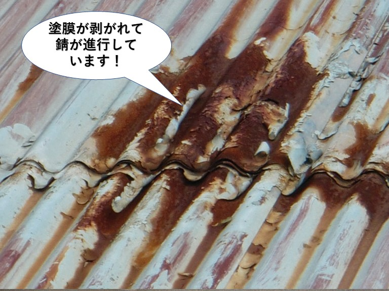 阪南市のトタン屋根の塗膜が剥がれて錆が進行しています