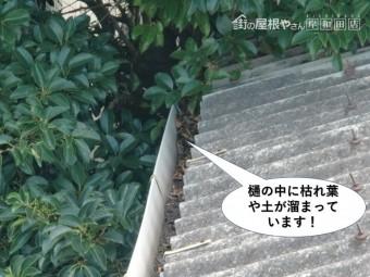 岸和田市の樋の中に枯れ葉や土が詰まっています