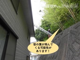 和泉市の屋根に笹の葉が飛んでくる可能性があります