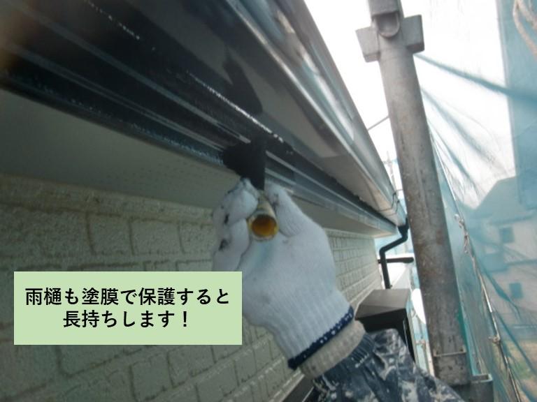 雨樋も塗膜で保護すると長持ちします