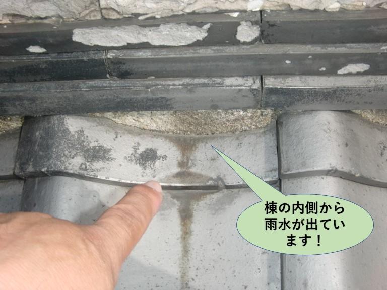 岸和田市の屋根の棟の内側から雨水が出ています!