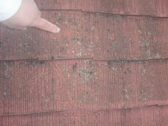 岸和田市上松町でスレート屋根の葺き替え工事着工 現況