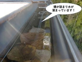 高石市の樋が詰まり水が溜まっています