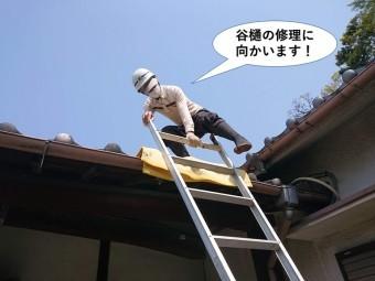 岸和田市の谷樋の修理に向かいます